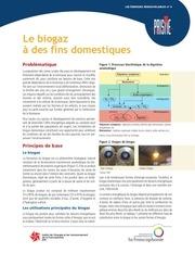 le biogaz a des fins domestiques
