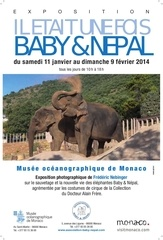 open circus 2014 affiche elephants