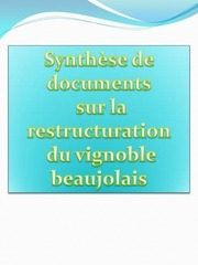 synthese sur la restructuration du vignoble beaujolais