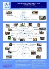 carte alca cheval territorial 1