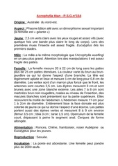 Fichier PDF acrophylla titan