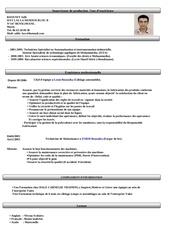 Fichier PDF cv baoussy