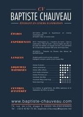 Fichier PDF chauveau cv 1