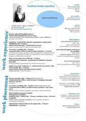 cv mlm eng online pdf