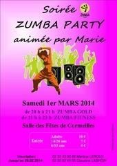 Fichier PDF zumba fitness 1