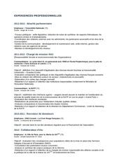 Fichier PDF experiences professionnelles