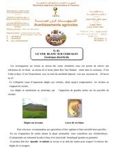Fichier PDF le ver blanc sur cereales
