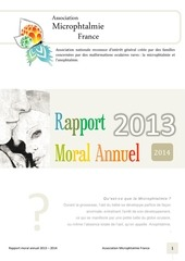 rapport moral 2013 association microphtalmie france