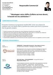 Fichier PDF cv nasreddine ben karroum res com 4