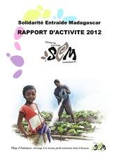 rapport d activite sem 2012 vf