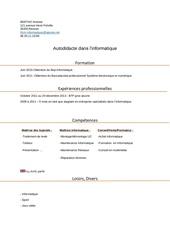 Fichier PDF cv mr bertho rcm informatique
