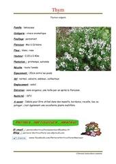 Fichier PDF thymus vulgaris