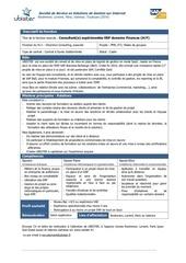 Fichier PDF fp consultant finances 2013 11