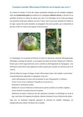 lutter contre botrytis
