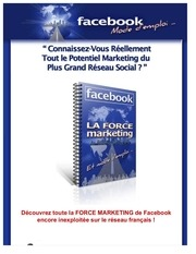 la force marketing de facebook encore inexploitee