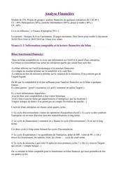 Fichier PDF pougne analyse financiere