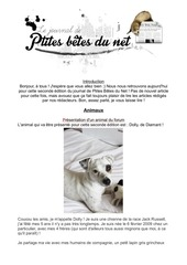 Fichier PDF journal pbdn 2 corrige