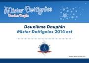 diplome mister 2eme dauphin