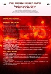 programme 2emes journees emir mars 2014