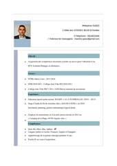 cv maxime bis assistant manager