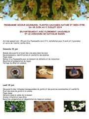 programme sejour juin 2014