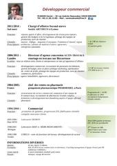 Fichier PDF cv carte visite