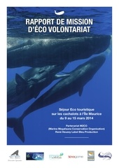 rapport eco volontariat mars 2014