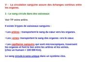 Fichier PDF tp coeur