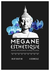 Fichier PDF plaquette megane esthetique