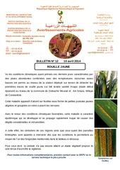 Fichier PDF 12 1rouille jaunes des cereales fin