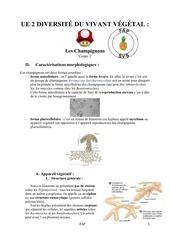 cours 2 diversite du vivant vegetal