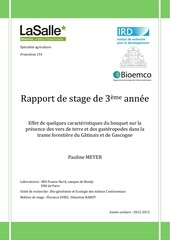 pauline meyer rapport 3a