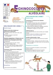 zoonoses en milieu professionnel echinococcose 1