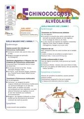 zoonoses en milieu professionnel echinococcose