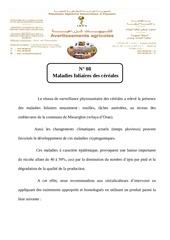 Fichier PDF maladies foliaires des cereales n 08