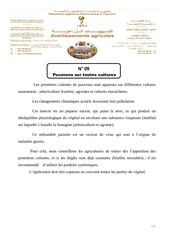 PHYTOSANITAIRE TÉLÉCHARGER GRATUIT INDEX 2013
