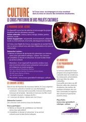 Fichier PDF culture action sociale