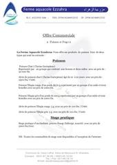 Fichier PDF offre commerciale ezzahraa1
