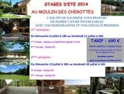 Fichier PDF affiche moulin 2014