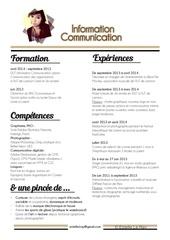 Fichier PDF cv3 en ligne 1