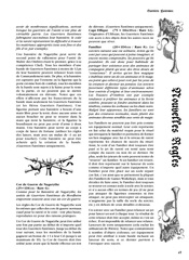 Guerriers Fantomes.pdf - page 4/7