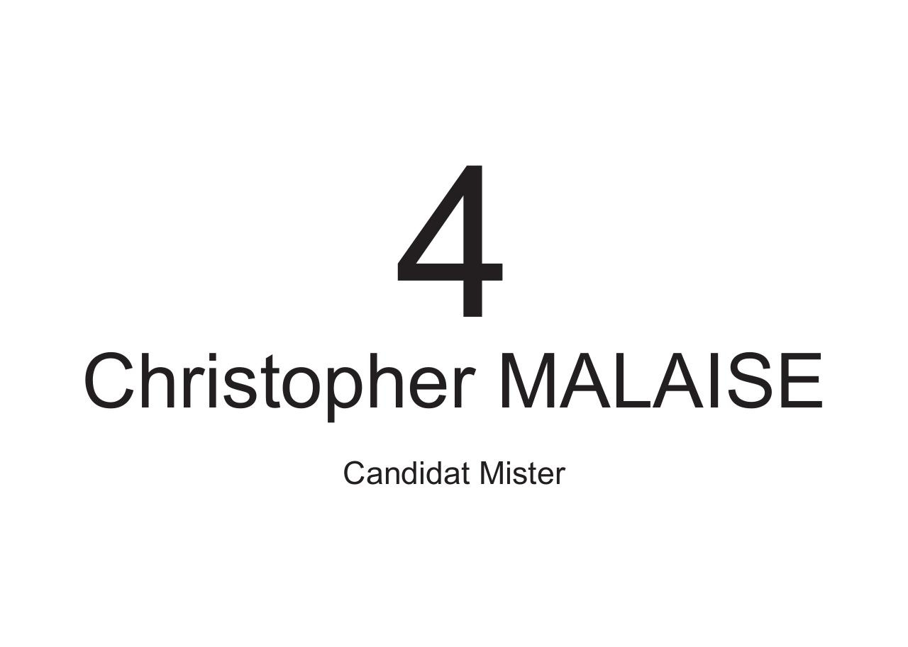 a4-candidat-mister.pdf - page 4/5