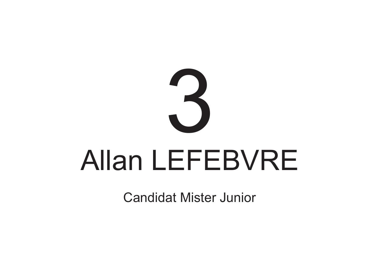 a4-candidat-misterjunior.pdf - page 3/6