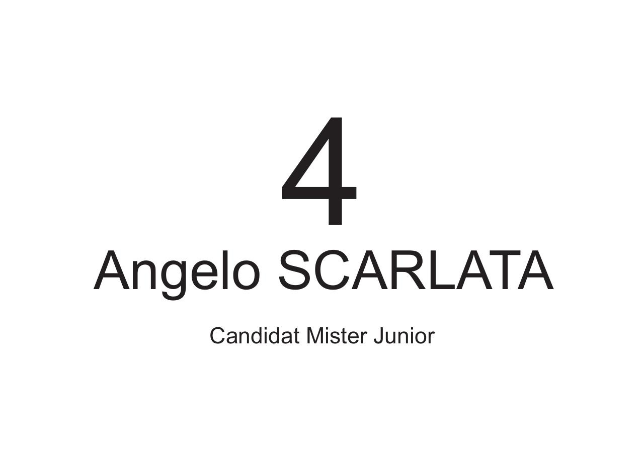 a4-candidat-misterjunior.pdf - page 4/6