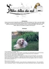 Fichier PDF journal pbdn 4