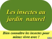 6 les insectes au jardin naturel