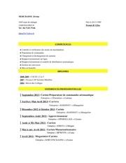 Fichier PDF cv jeremy