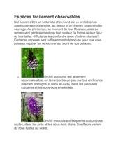 especes facilement observables 1