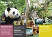 Brochure ZooParc Beauval 2014_UK.pdf - page 2/11