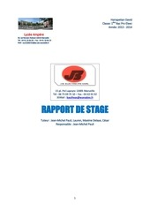 Fichier PDF rapport de stage david 1ere pro 2